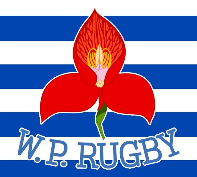 Western Province Free Rugby Wallpapers